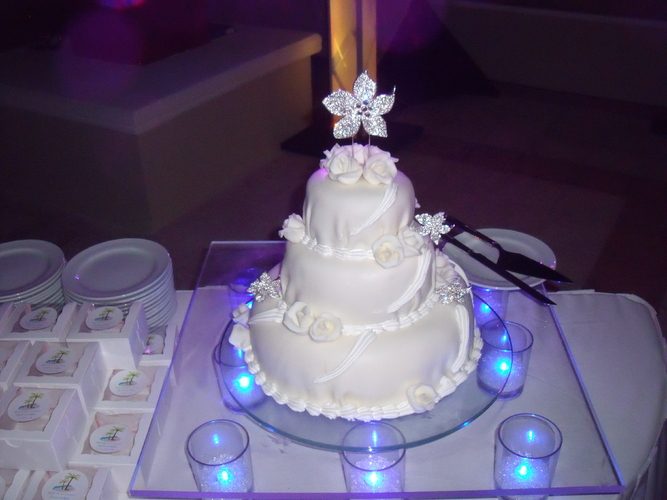 Day 6 reception cake (2).JPG